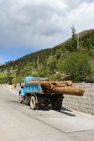 Truck with logs in China photo