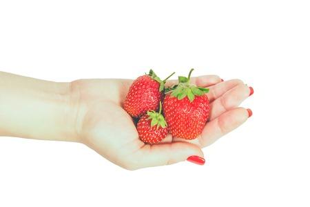 Donna manicured mano whith chiodi rossi polacco azienda fragole fresche su sfondo bianco. Archivio Fotografico - 80648424