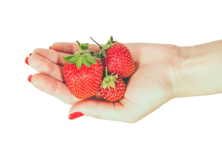 Donna manicured mano whith chiodi rossi polacco azienda fragole fresche su sfondo bianco. Archivio Fotografico - 80677912