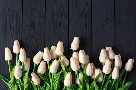 A bouquet of white and biege tulips, on a black wooden background, flat, top view copy space.