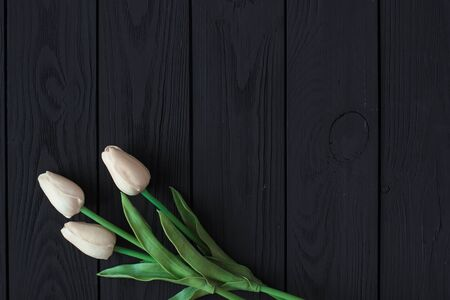 white tulips on black old wooden background top view. copy spase