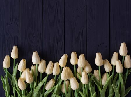 A bouquet of white tulips, on a black wooden background, flat lei, top view copy space.