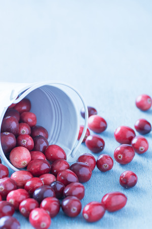 mountain cranberry: Fresh cranberries in a white fallen over bucket on a blue wooden table.