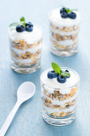 Layered cream dessert with blueberry and mint