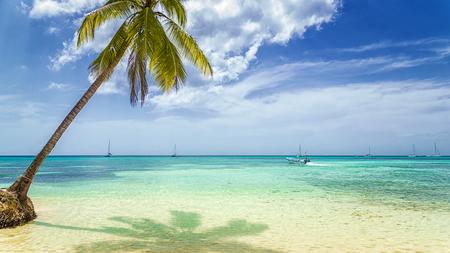 Tropisch strand met palmbomen en vissersboot.