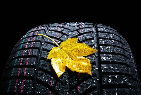Winter car tires wheel profile with autumn leaves on black background.