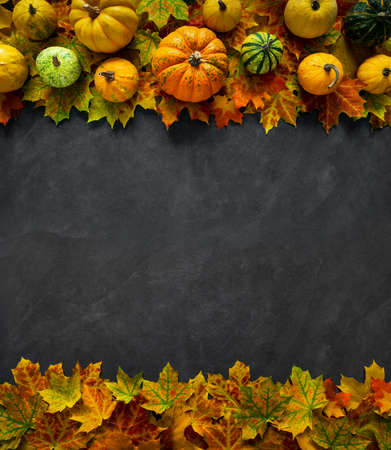 Autumn Pumpkin Thanksgiving Background - top view