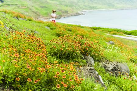 Coast Trail in Taiwans Penghu Stock Photo