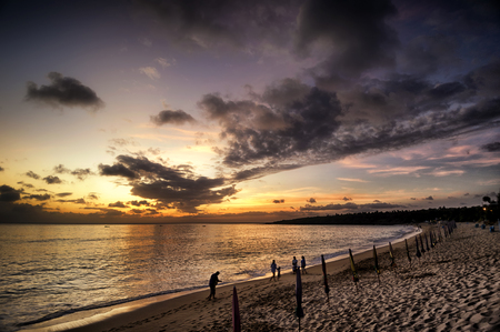 Majestic Beautiful Sunset