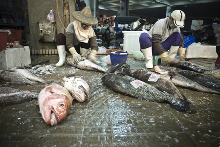Kaohsiung, Taiwan - March 11, 2011: Workers at the Sinda fishing port manage fresh catches to be sold on the daily market.
