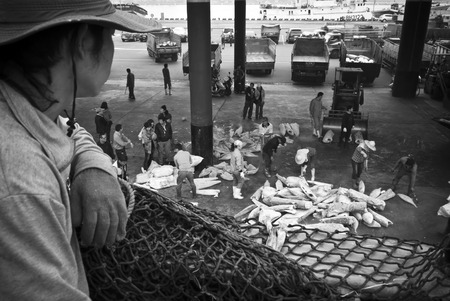 Kaohsiung, Taiwan - May 18, 2016: Workers in Qianzhen Fishing Port are busy unloading the catch