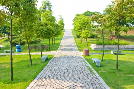 Park Pathway photo