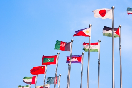 Asian countries and regions the flag photo