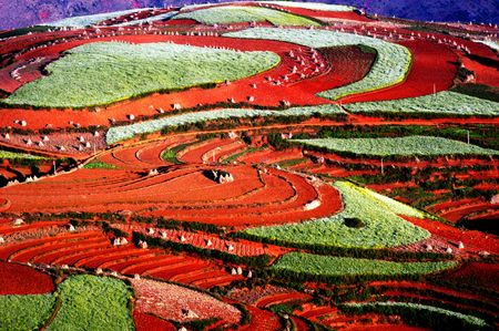 Be riot with colours, Dongchuan, Yunnan, China Stock Photo