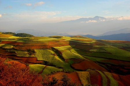 Fields and garden,beautiful,In Yunnan, China Stock Photo