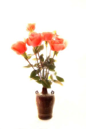 Roses in vase Stock Photo