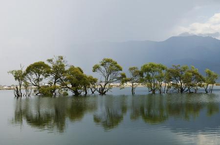 Heqing Huanglongtan,Dali,Yunnan,China