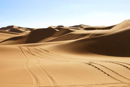 erg:  Desert in Hasi Labied, Moroco, Africa  Interesting colored sand dunes  Popular travel destination   Stock Photo