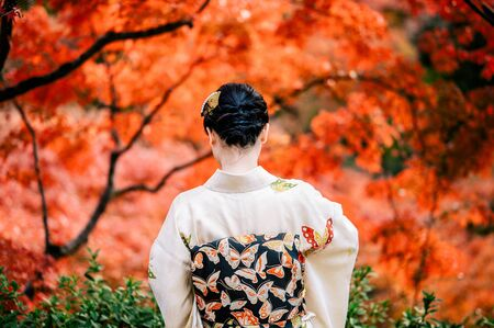 Young women wearing traditional Japanese Kimono  with colorful maple trees in autumn is famous in autumn color leaves and cherry blossom in spring, Kyoto, Japan.