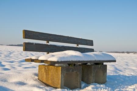bench park: Banco del parque en invierno