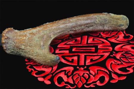 chinese herbal medicine buck horn Stock Photo - 8428306