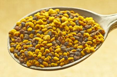 bee pollen: Bijenpollen Stockfoto