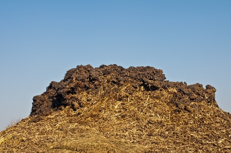 dung: dung hill with a blue sky Stock Photo