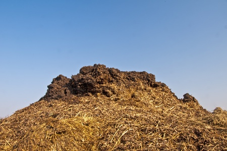 bullshit: dung hill with a blue sky Stock Photo
