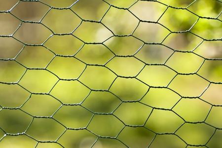 fence with green background Stock Photo - 9292363