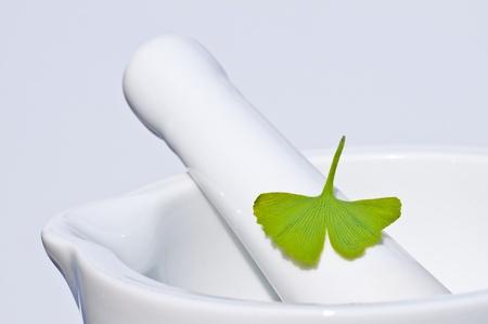 ginkgo leaf: mortar with Ginkgo leaf Stock Photo