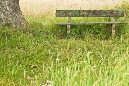 idyll: park bench idyll Stock Photo