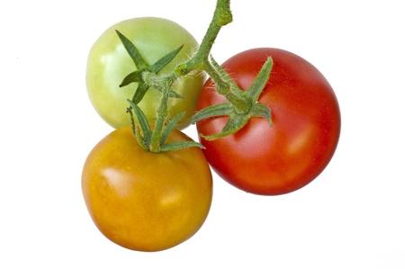 mediteranean: tomato