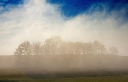 descending: descending fog in autumn