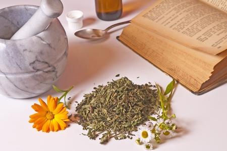 mortar with herbs and tincture Stock Photo - 11741910