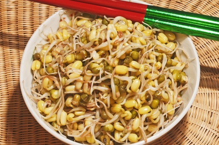 soybean sprout photo