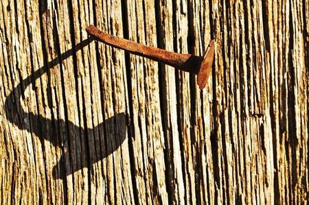 trailblazer: odd nail