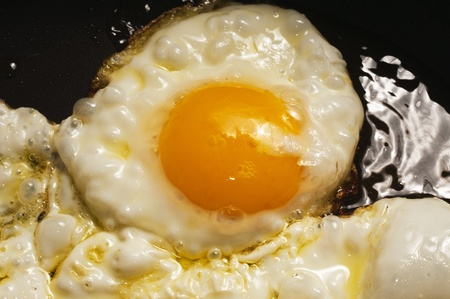 fried egg Stock Photo - 13278745