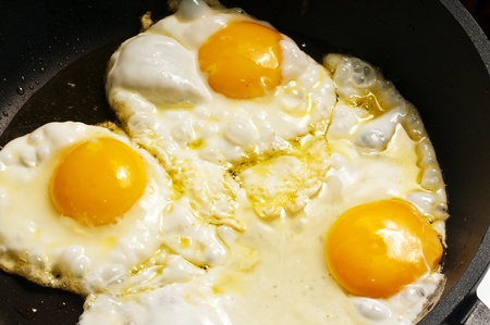 fried eggs photo