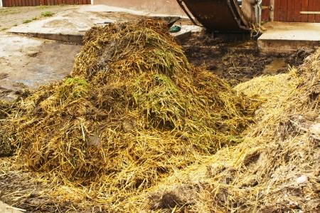 fecal: dung heap with crane