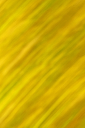 background with stripes in autumnal colors Stock Photo - 15572448