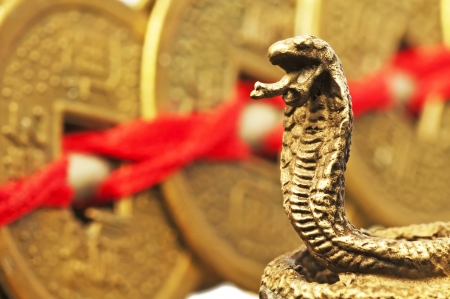 chinese culture: Feng shui year of the snake Stock Photo