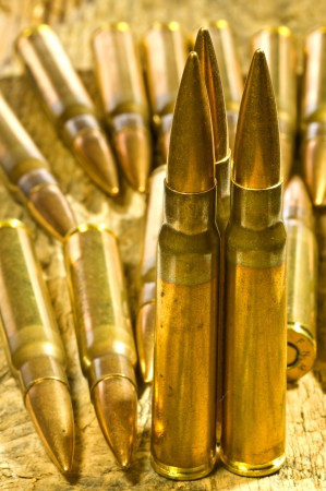 ammunition 8X57 IS Stock Photo - 17513433