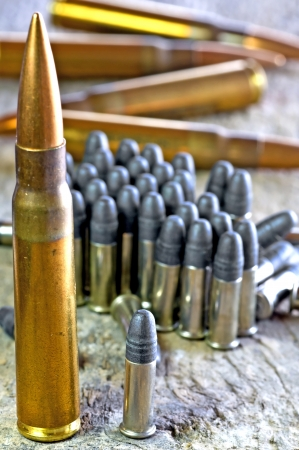 ammunition 8X57 IS and cal.22 long rifle Stock Photo - 17756245