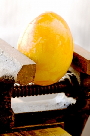 vise: Egg in a bench vise