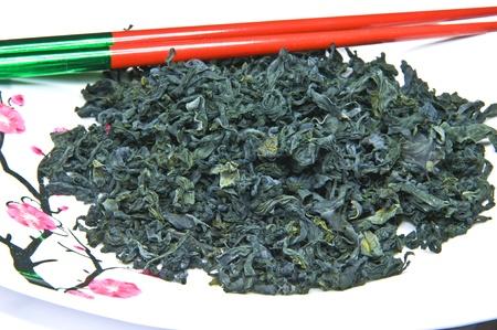 alga: Alga Stock Photo