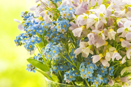 bouqet: Bouqet of meadow flowers Stock Photo