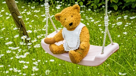 Teddy bear on swing photo