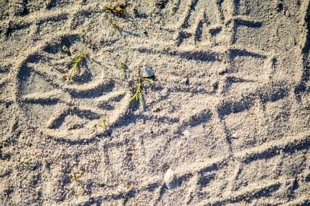 Tracks in sand photo