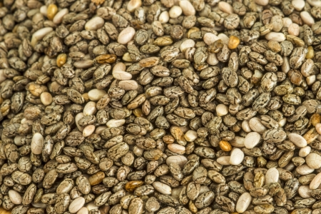 hispanica: Chia seeds, Salvia hispanica