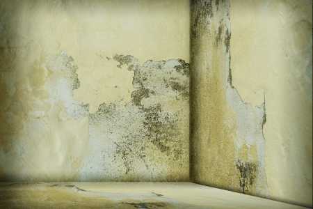 constructs: Empty room with dirty wall